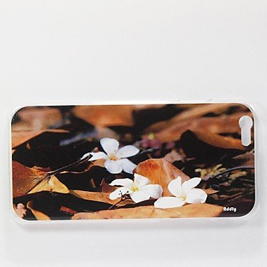 eva-an-hd-photo-of-tung-oil-flower-printed-on-a-pc-hard-case-for-iphone-6