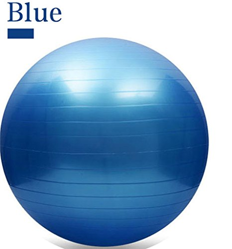 65CM Gym Fitness Ball, H&Z Exercise Pilates Balance Swiss Yoga Gym Fitness Ball Aerobic Abdominal Aerobic Abdominal Static Strength Exercise Stability Ball (Blue)
