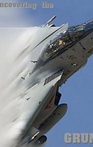 Grumman F-14 A/b/d Tomcat