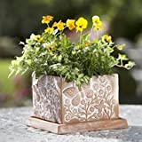 Butterfly Garden Terracotta Planter