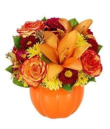 Star of Bethlehem - eshopclub Same Day Halloween Flower Delivery - Online Halloween Flower - Halloween Flowers Bouquets - Send Halloween Flowers