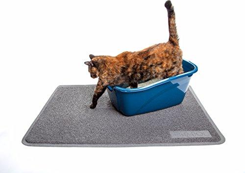 stop my cat pooping on the floor