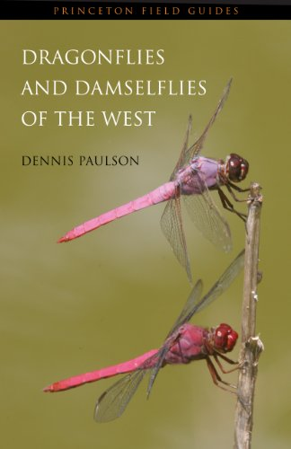 Dragonflies and Damselflies of the West (Princeton Field Guides)