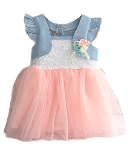 Baby Kids Girls Princess Party Denim Tulle Flower Dresses Toddler Skirts 6M-4Y F (Xxl(Advice3-4Years), Pink.)