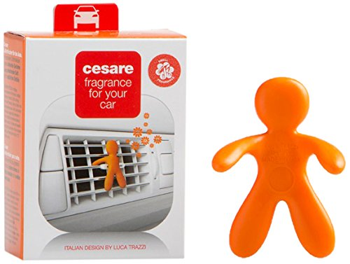 Mr&Mrs cesare オレンジ