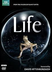 Life (original UK version)