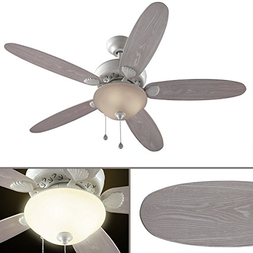 Travel Ceiling Fan : ″ clearwater indoor outdoor ceiling fan with light kit