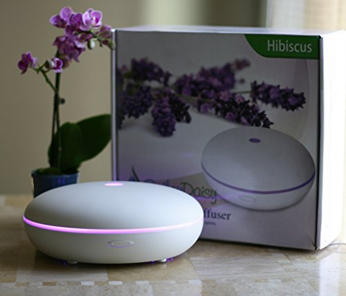 Smiley Daisy Essential Oil Diffuser, Quite Cool Mist Humidifier, 350 ml (Daisy Humidifier compare prices)