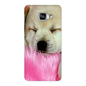 Ajay Enterprises Elite Cuty Sleeping Pup Back Case Cover for Galaxy A3 2016