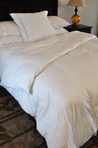 Fantastic Deal! Natural Comfort Soft and Luxurious 300TC Sateen White Down Alternative Duvet Insert,...