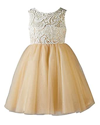 Amazon.com: Thstylee Lace Tulle Flower Girl Dress Little ...