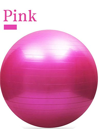 65CM Gym Fitness Ball, H&Z Exercise Pilates Balance Swiss Yoga Gym Fitness Ball Aerobic Abdominal Aerobic Abdominal Static Strength Exercise Stability Ball (Pink)
