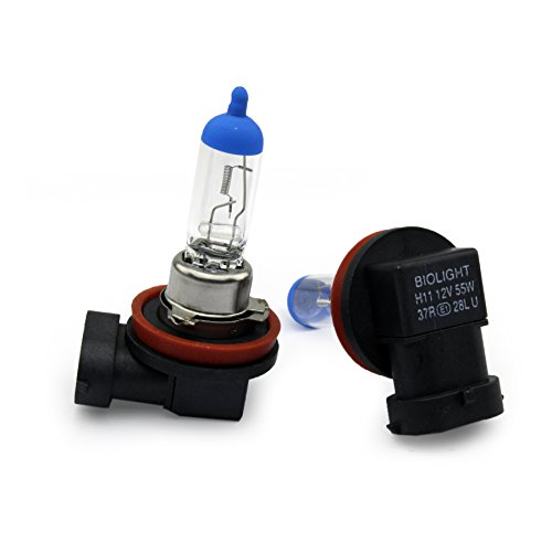 2x-H11-55W-BlueTop-PGJ19-2-Halogen-Scheinwerferlampe-CLEAR-WARM-WEISS-Nebellampe-Glhlampen-fr-Nebelscheinwerfer-12Volt-von-Jurmann-Trade-GmbH-Mit-E-Prfzeichen-somit-zugelassen-im-Bereich-der-STVZO