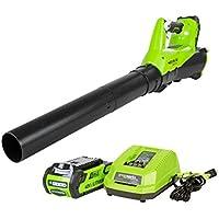 GreenWorks BA40L210 G-MAX 40V Cordless Brushless Blower