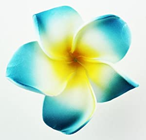 Blue Hawaiian Flowers Clip Art