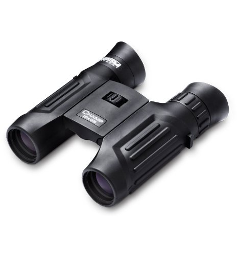 Steiner 2113 10X 26Mm Champ Binocular, Black