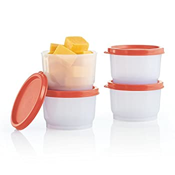 Tupperware Snack Cups : Impressions