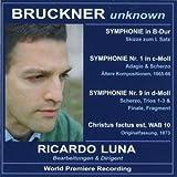 ブルックナー・アンノウン ~ リカルド・ルナにより室内管弦楽用編曲および補筆完成された作品集 (Bruckner Unknown / Ricardo Luna) [輸入盤]