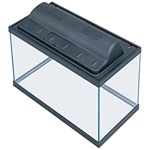 Amazon.com : All Glass Aquarium AAG09009 Tank and Eco Hood ... 10 Gallon Home Aquariums
