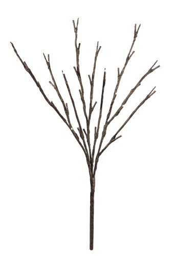 Floral Lights Lighted Willow Branch with 30 bulbs, 20 inches (Battery operated) (Led Floral Lights compare prices)