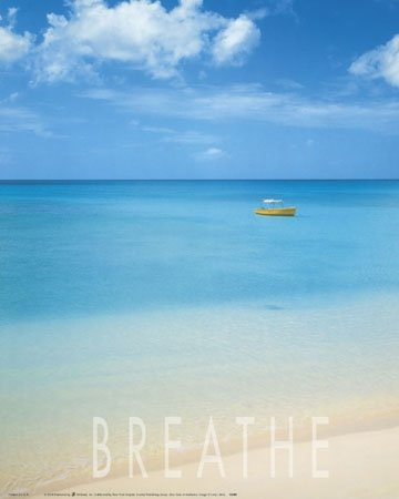 Scenic Beach Tropical Ocean Poster