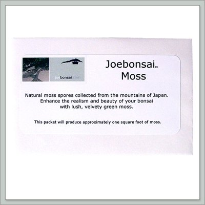 Buy Bonsai Top Dressing – Moss Spores From Japan – By joebonsai