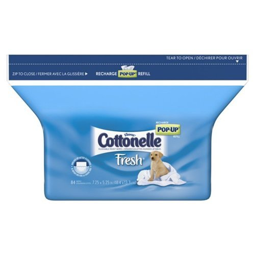 Groovy Charmin Toilet Charmin Toilet Onthecornerstone Fun Painted Chair Ideas Images Onthecornerstoneorg