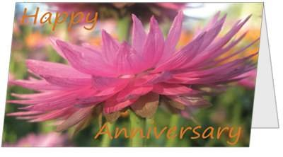 Anniversary Flowers Couple Beautiful (5x7) Greeting
