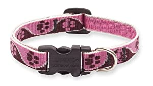 Lupine 1/2-Inch Tickled Pink 6-9-Inch Adjustable Dog Collar for Small Dogs