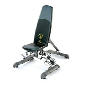 Golds Gym Maxi Dumbbell Bench