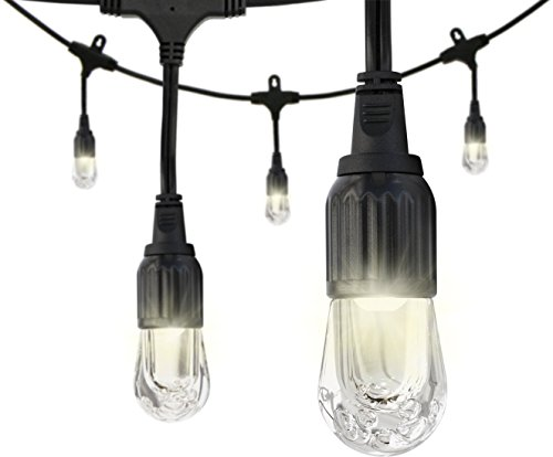 Construction String Lights Lowes : Enbrighten Cafe LED String Lights (48 ft.), 24 Lifetime Bulbs, Premium, Weatherproof ...