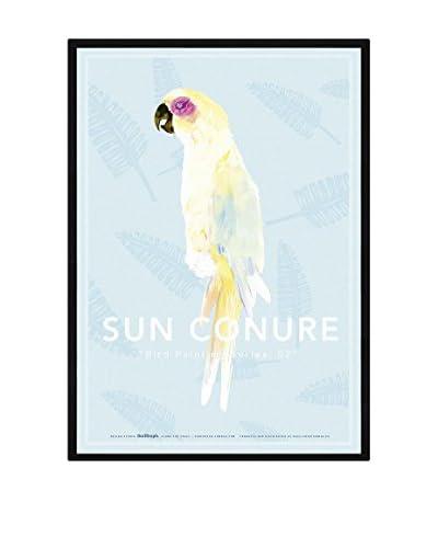 Really Nice Things Cuadro Sun Conure
