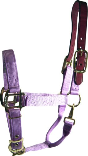 Hamilton 1 Adjustable Leather Head Poll Halter with Brass Snap, Yearling/Standard Donkey Size (300-500 Pounds), Lavender