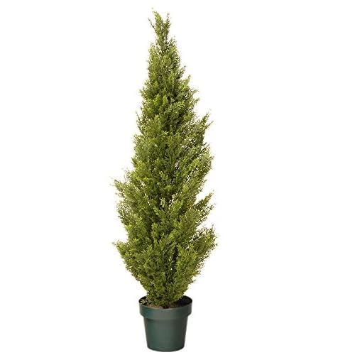 National Tree 48 Inch Arborvitae Tree in Dark Green Round Plastic Pot (LMC4-700-48-6)