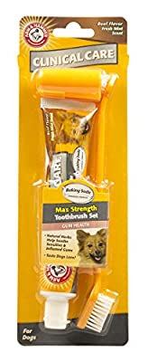 Arm & Hammer Advanced Care Fresh Breath Toothpaste & Brush Set for Dogs
