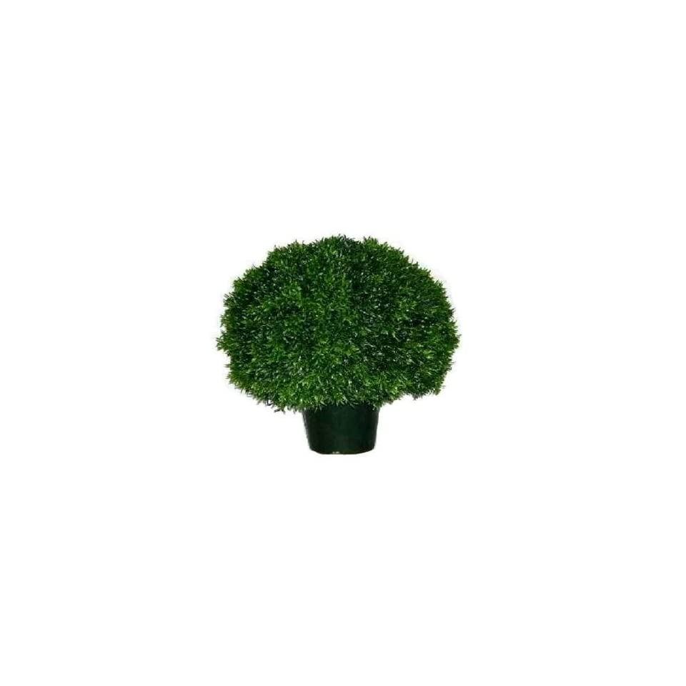 National Tree Company LCDT 701 24 24 Inch Yew Single Ball Topiary in Green Round Plastic Pot