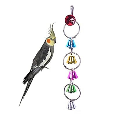 Pet Bird toy