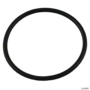 "O-Ring, 2"" Heater Union (O-301) 229-7470-10"
