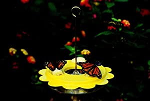 Nature Products 1001 Flutterby Original Butterfly Feeder