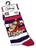 Ladies Disney- Boing, Boing It's Tigger Pink Purple Striped Socks UK 4-8