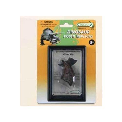 CollectA First Toe of Tyrannosaurus Rex Box Set - 1