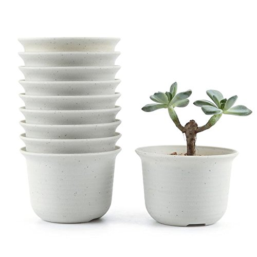 t4u-425-inch-plastic-round-sucuulent-plant-pot-cactus-plant-pot-flower-pot-container-planter-white-p