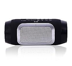 Spintronics C65 Pulse Bluetooth Wireless Mobile/Tablet Speaker (Black)