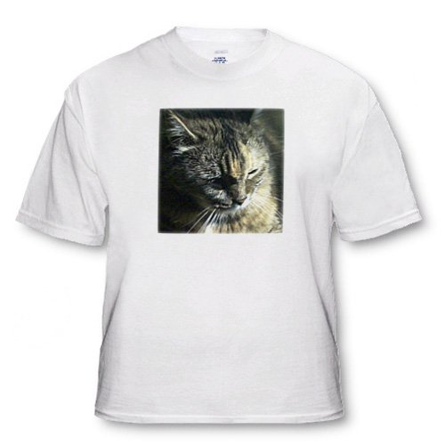 Gorgeous Maine Coon Cat The Queen - Adult T-Shirt 2XL