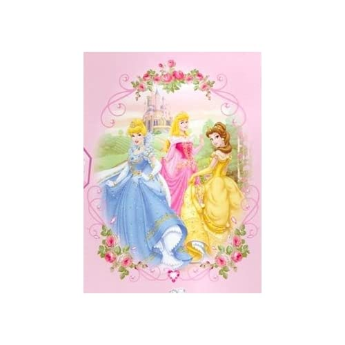 Disney Princess Twin Dolls With Blankets Cinderella Snow: Disney Princess Twin Blanket Mink Raschel Plush Thick