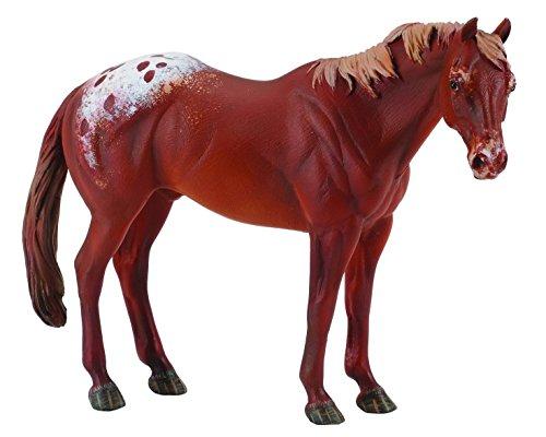 CollectA Chestnut Appaloosa Stallion - 1
