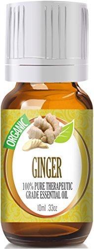 Ginger (Organic) 100% Pure, Best Therapeutic Grade Essential Oil - 10Ml