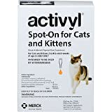 Activyl Cats And Kittens 6pk Cats