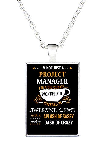 im-not-just-a-project-manager-awesome-sassy-crazy-necklace