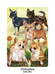Best Friends Playing Cards, by Ruth Maystead - Chihuahua - 1